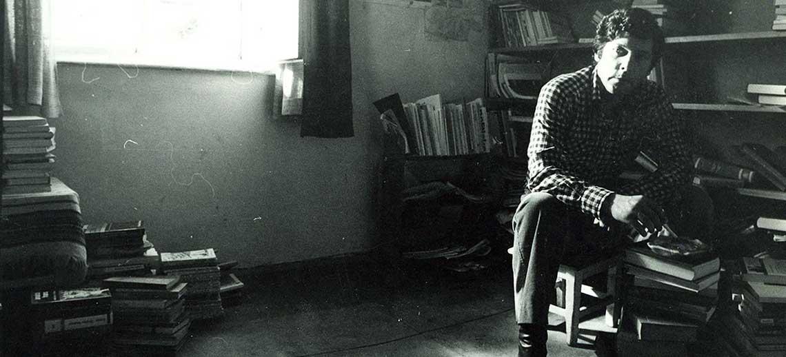 Ivica Vidovic (Ritam zlocina, 1981)