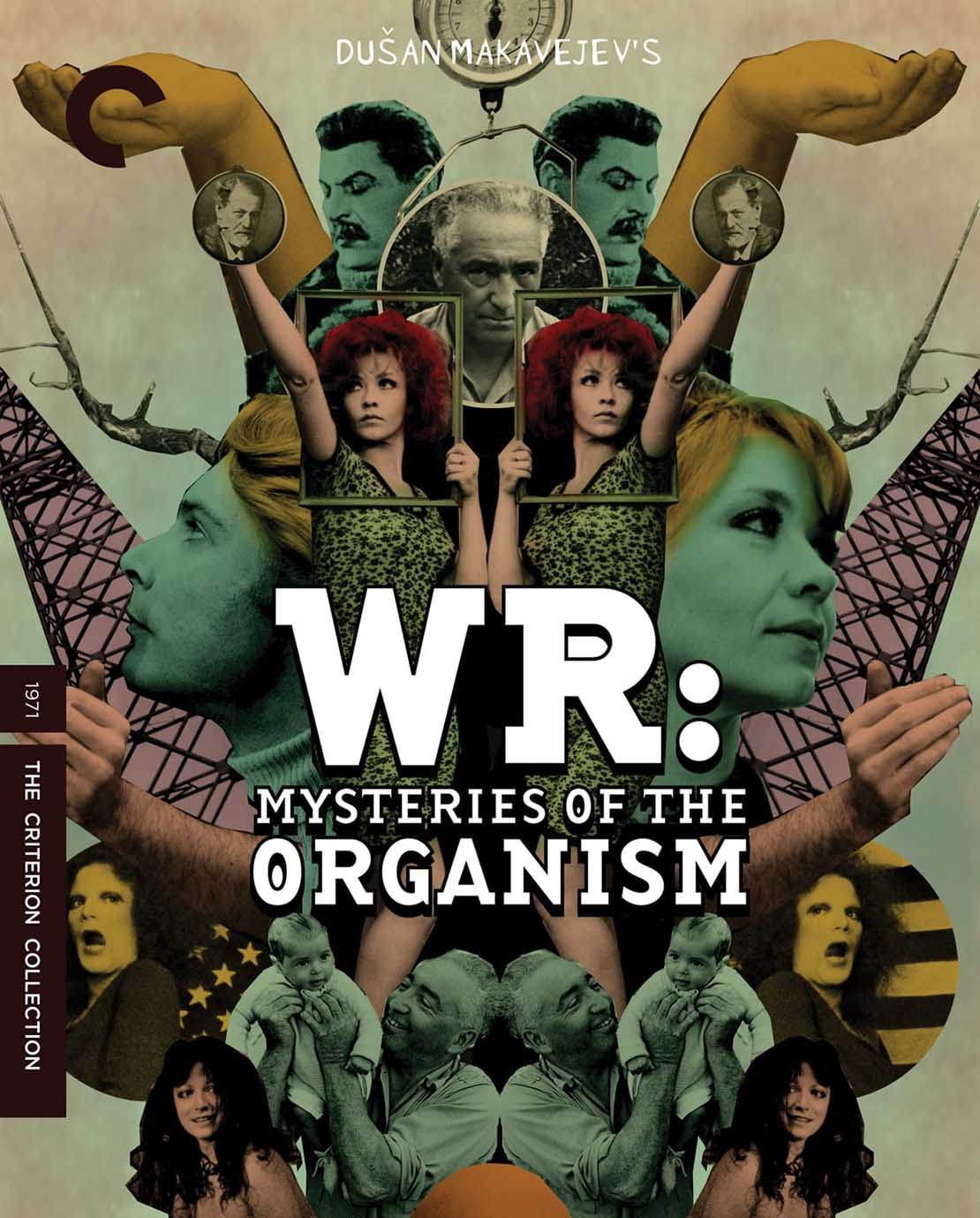 WR- Mysteries of the Organism